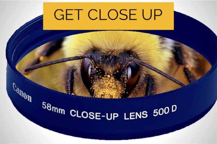 Canon 500D Close Up Lens Macro