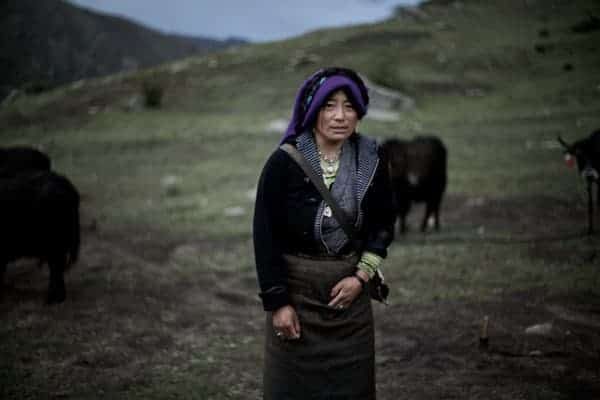 Nomad with Yak at Drigung Valley Tibet by Lyle Vincent