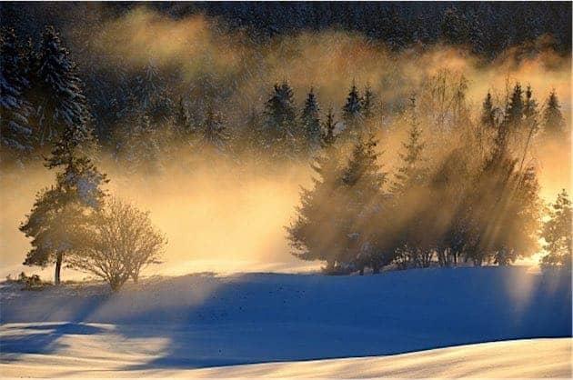 Sample Image for Best Zoom Lens taken with the The Nikon 16-85mm f/3.5-5.6G AF-S DX ED VR II