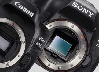 Canon EOS 80D compared to the Sony a77ii
