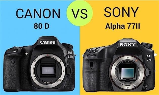 Comparison 80D Vs. Sony A77II