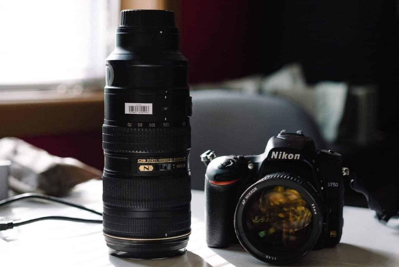 Best canon lens wildlife photography