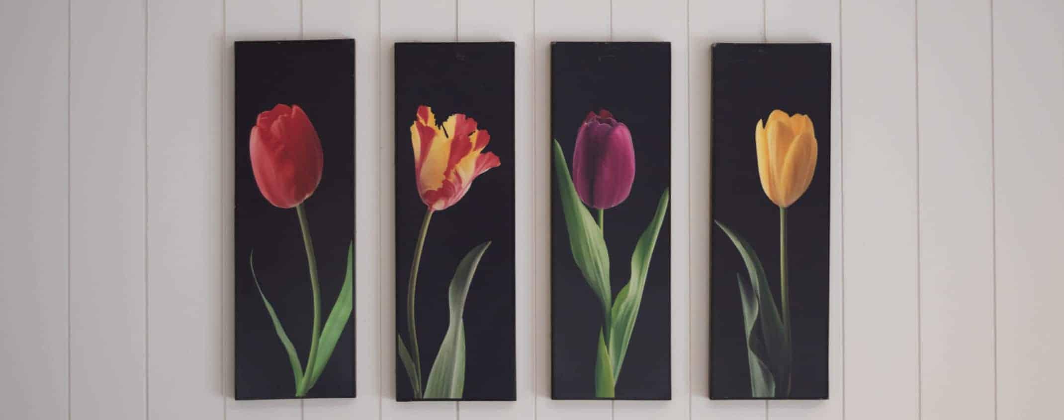 Canvas Prints (Comparing CanvasPop vs CanvasChamp)