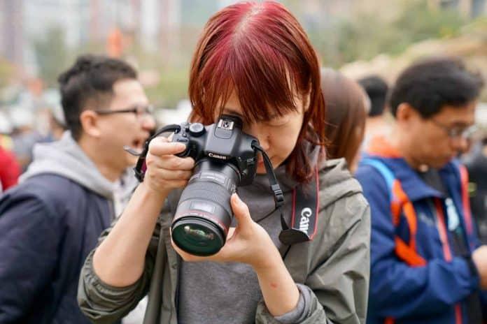 Comparing the Best Canon Macro Lenses