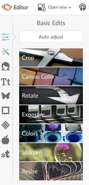 PicMonkey Review Basic Editor