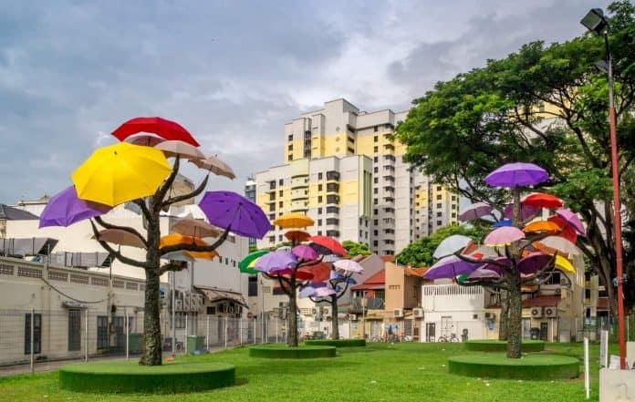 Umbrella Trees in Singapore's Little India