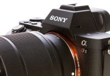 Comparing the Best Lenses for Sony Mirrorless Cameras