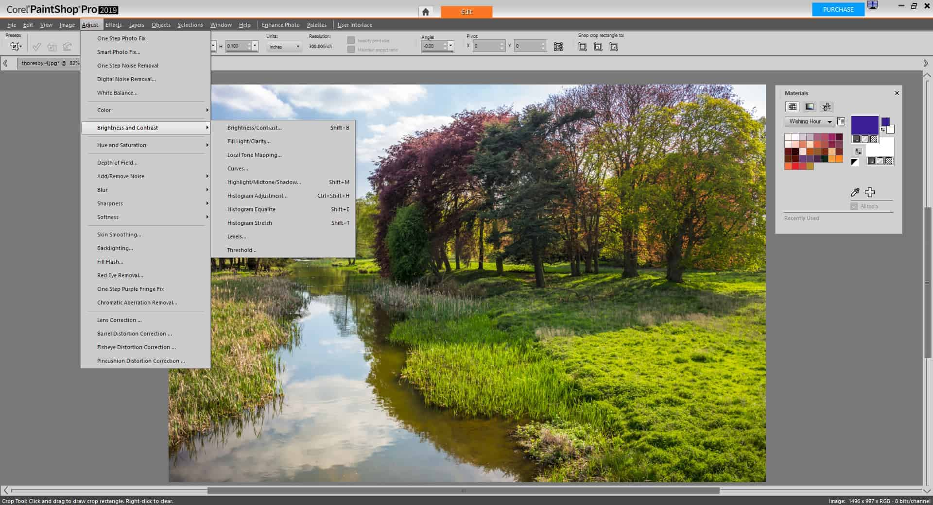 PaintShop Pro 2019 Ultimate Review