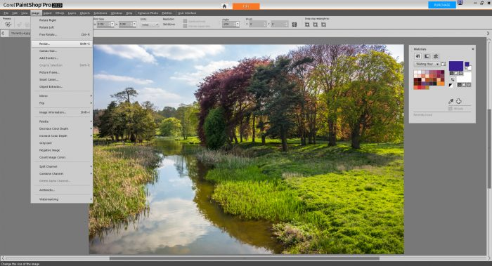 PaintShop Pro 2019 Review - Image editing