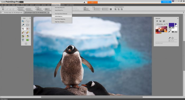 PaintShop Pro 2019 Review - Enhance Photo