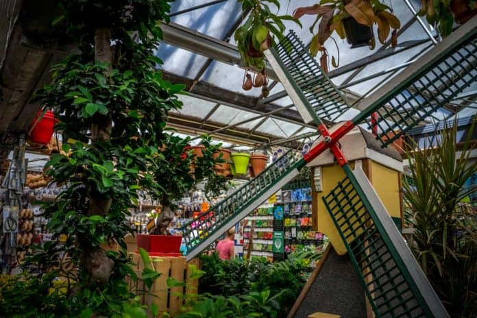 What to photograph in Amsterdam - Flower Market