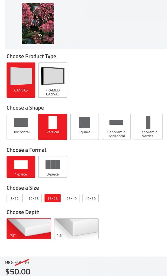 icanvas photo canvas options