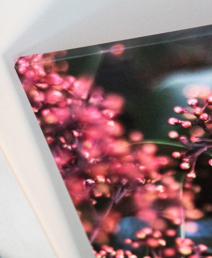icanvas photo canvas sample