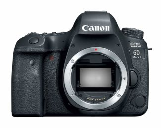 Canon 6d mark ii best cameras for wildlife photography
