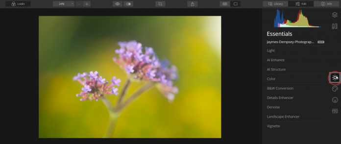essentials tab in luminar