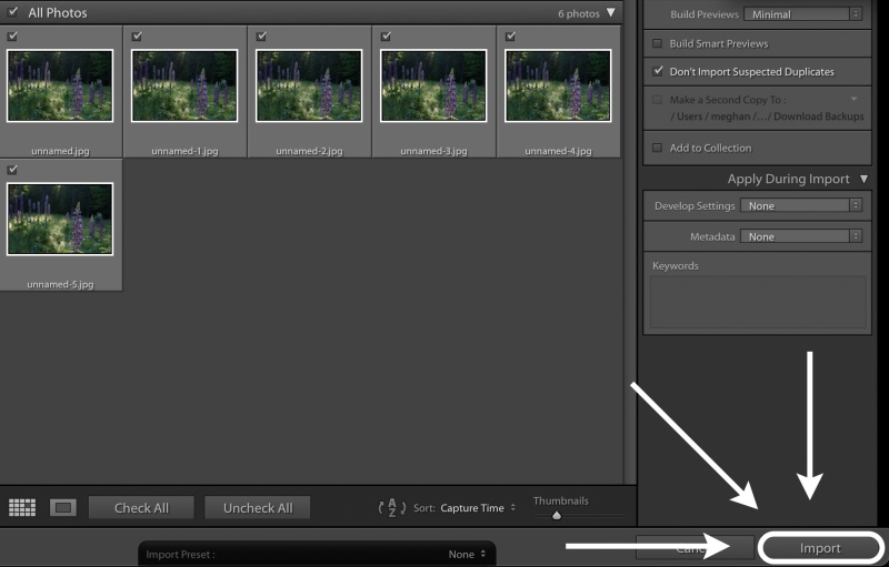 importing images into lightroom