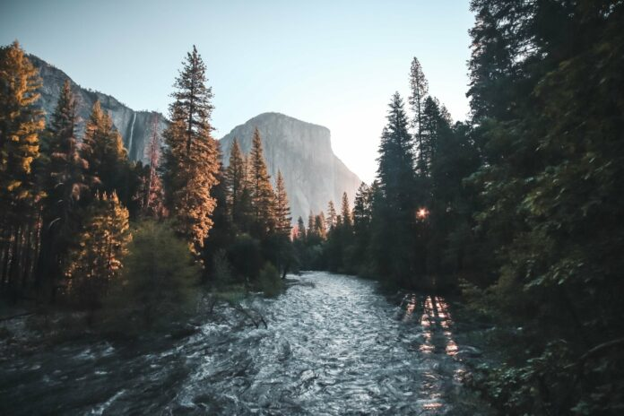 river, forest, and mountain landscape with a deep depth of field